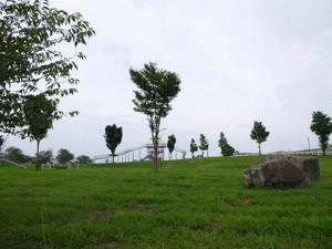 P1420016s.jpg