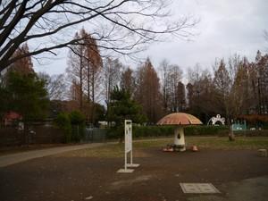 P1440364.jpg