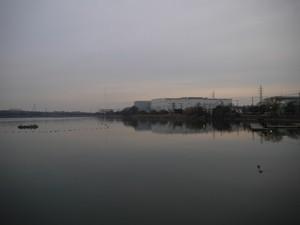 P1530035.jpg