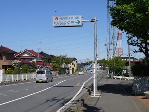 P1670471.jpg