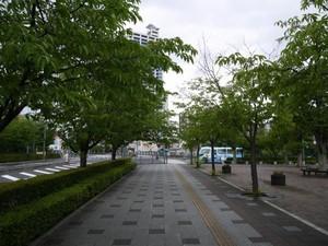 P1870081.jpg